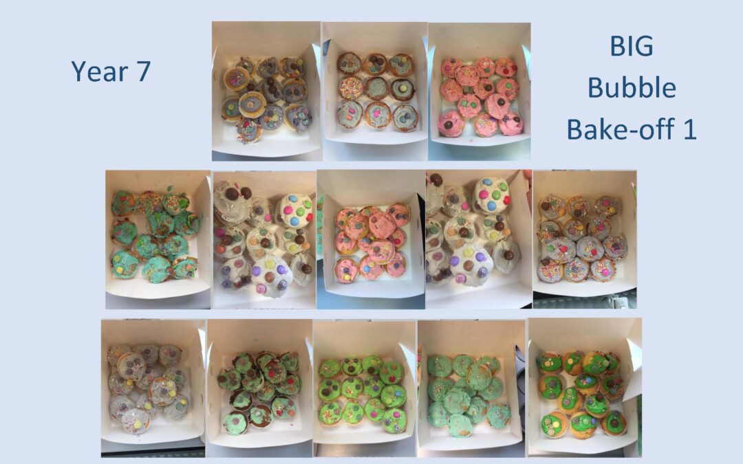 BIG Bubble Bake-off sessions